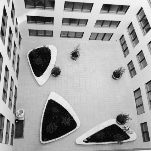 Triangular planters in courtyard