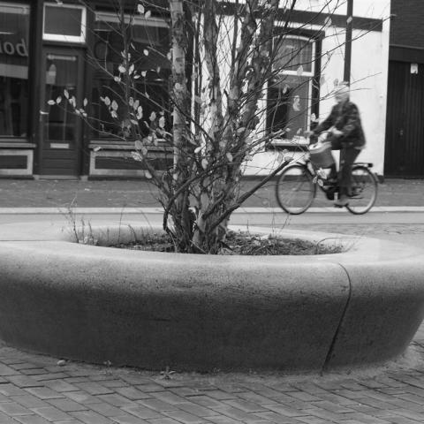 Castricum bench